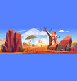 desert landscape with rocks cactuses and monkey vector image vector image