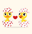 duck couple in love in egg vector image