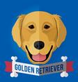 golden retriever vector image