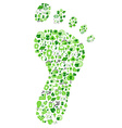 green eco friendly footprint filled with ecology vector image vector image