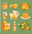 oranges juice food products vector image vector image
