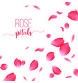 rose red petals falling on a white background vector image vector image