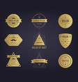 set abstract hipster golden labels vector image