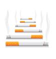Smoking Cigarettes vector image vector image