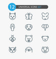 zoology icons set with penguin owl bear and vector image vector image