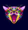 colorful angry cat head the cat growls angry cat vector image vector image