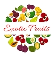 Exotic fruit circle poster for healthy food design vector image vector image