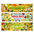 exotic fruits natural fruitarian food harvest vector image vector image