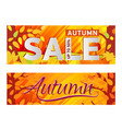 set bright orange banner golden autumn autumn vector image vector image