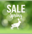 spring sale poster with blurred background vector image vector image