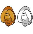 Orangutans vector image