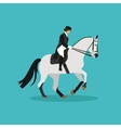 Race horse and lady jockey Horseback riding vector image vector image