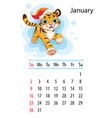 tiger wall calendar design template for january vector image