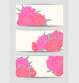 beautiful set horizontal banners with flowers vector image vector image