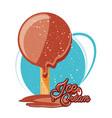 delicious chocolate ice cream in stick vector image