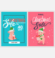 final christmas sale pigs and piglets winter hats vector image vector image