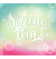 Spring time inscription vector image vector image