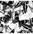 seamless pattern with hand drawn butterflies vector image