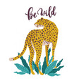 be wild slogan leopard typography graphic print vector image