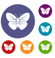 black butterfly icons set vector image vector image