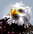 eagles head vector image vector image
