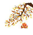hello autumn autumn landscape with autumn leaves vector image vector image
