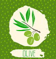 Olive hand drawn sketched fruit with leaf on vector image vector image