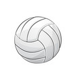 volleyball with stroke vector image vector image