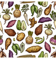 exotic vegetables and roots seamless pattern vector image vector image