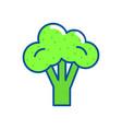isolated broccoli design vector image