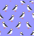 print with puffin vector image