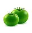 Ripe Green Fresh Whole Tomatoes on Background vector image vector image