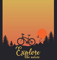sunset with bicycle birds tree hill amazing nature vector image vector image