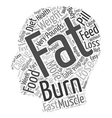 Burn the Fat and Feed the Muscle text background vector image vector image
