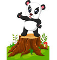 cartoon panda posing on tree stump vector image vector image