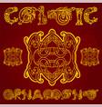 celtic decorative ornament vector image vector image