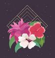 floral arrangement flowers foliage dark background vector image vector image