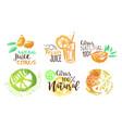 fresh natural citrus juice labels set hand drawn vector image vector image