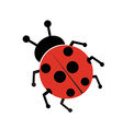 Ladybug isolated on white vector image vector image