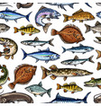 sea and ocean fishes seamless pattern vector image vector image