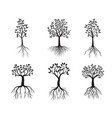 set back tres with roots outline vector image vector image