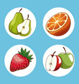 set of fruits round icons vector image vector image