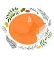 Sleeping fox vector image