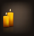 background with two candles vector image