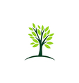 green tree ecology abstract logo vector image vector image