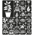 houseplants vector image