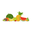 juicy fruit and berries vector image vector image