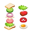 Sandwich Ingredients Food vector image vector image