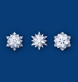 set 3 paper cut snowflakes with shadow vector image