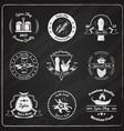 spices emblems on chalkboard set vector image